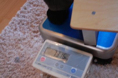 ロフトの階段互い違い階段ロフトくん 重さ測定中