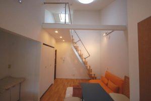 互い違い階段LX-Type横写真